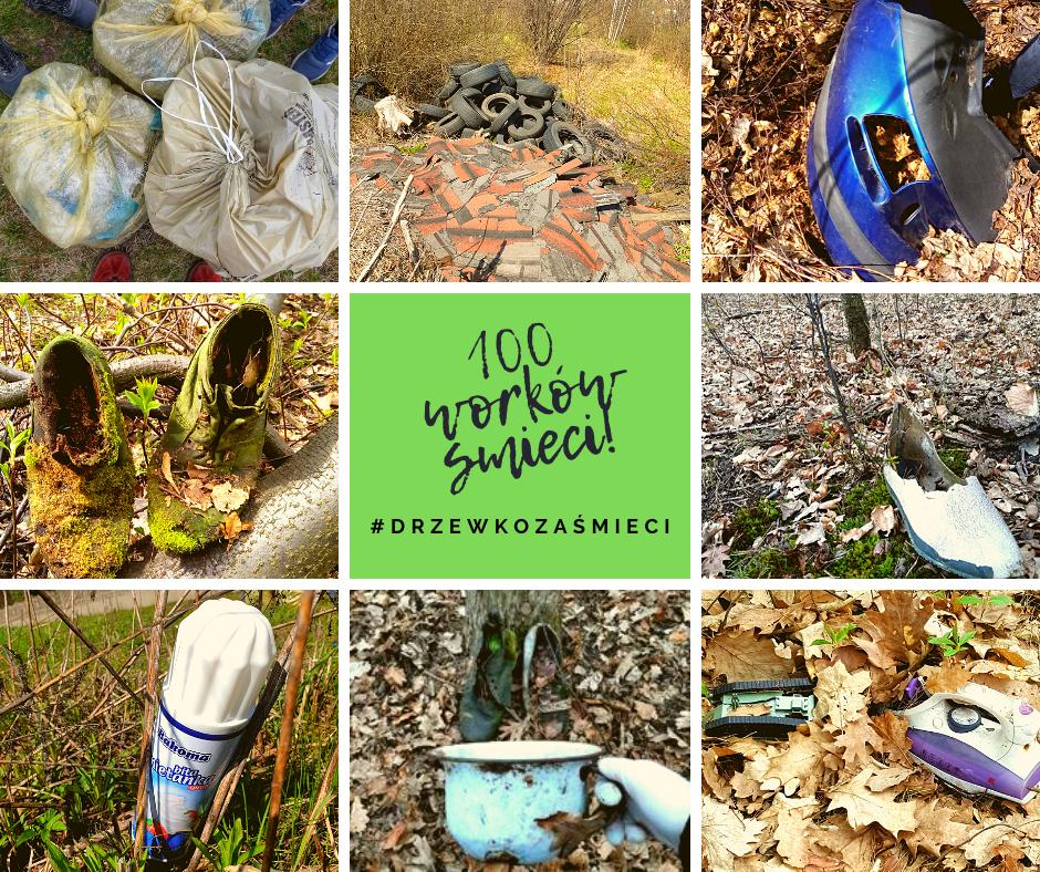 Mamy już 100 worków śmieci zebranych w akcji sprzątania imielińskich lasów!